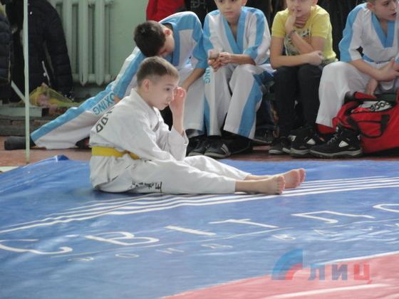 Чемпионат по кикбоксингу среди спортсменов высшей категории открылся в Луганске (ФОТО)
