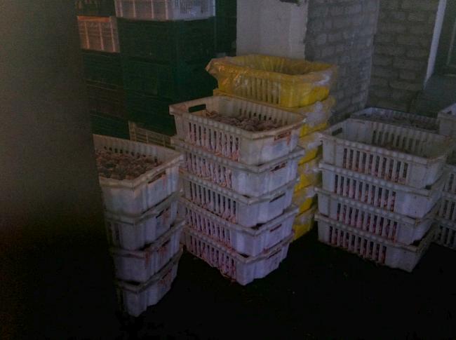 Пресечена незаконная хозяйственная деятельность СПД, связанная оптовой торговлей мясной продукции