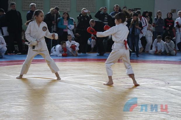 Спортсмены ЛНР заняли 46 призовых мест на открытом первенстве по каратэ в Луганске (ФОТО)