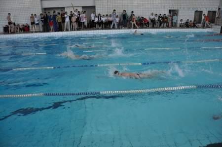Более 200 спортсменов приняли участие в соревнованиях по плаванию