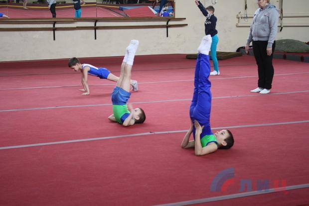 Спортивные гимнасты ЛНР и РФ приняли участие в открытом первенстве в Луганске (ФОТО)