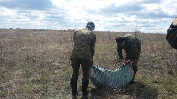 Обстрел со стороны ВСУ прервал эксгумацию тел украинских бойцов под Дебальцево – Народная милиция (ФОТО)