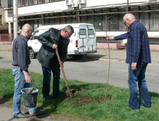 Члены профсоюза медиков ЛНР высадили цветы в память о погибших коллегах (ФОТО)