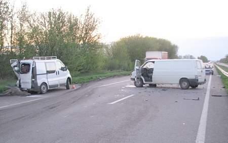 Водитель в Ровенской области сбил лося и погиб