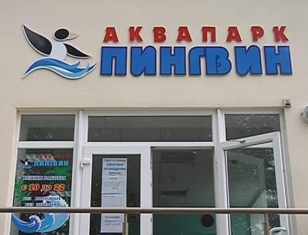 Открытие аквапарка «Пингвин»