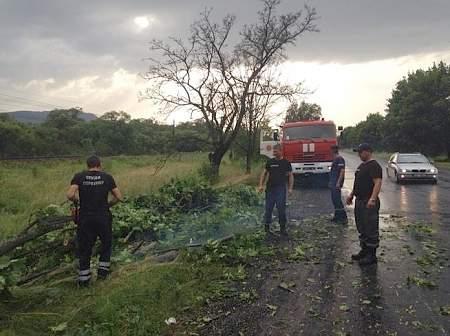 Из-за непогоды в Западной Украине обесточены 159 населенных пунктов