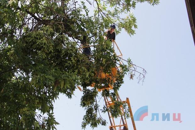 Мэр Луганска поручил за двое суток ликвидировать последствия стихии 30 и 31 июля (ФОТО)