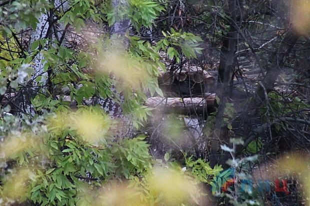 ВСУ в районе Станицы возвели блиндаж в 50 метрах от позиций Народной милиции ЛНР (ФОТО)