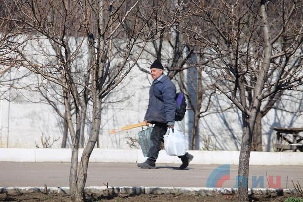 Прихожане за день высадили на территории храма в Луганске 150 кустов роз (ФОТО)